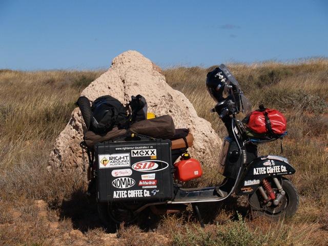 Vespa Ant Mound